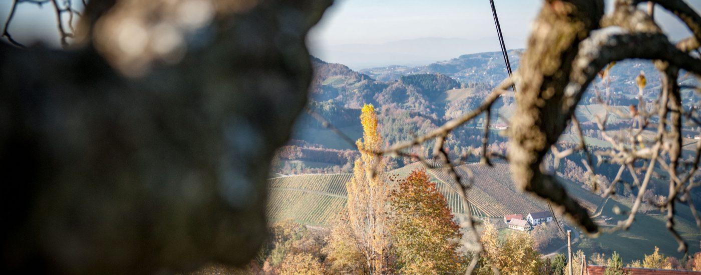 bergsteirer-heiligengeistklamm-leutschach-6